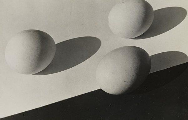 Пинакотека модернизма в Мюнхене показывает фотографии Энне Бирман